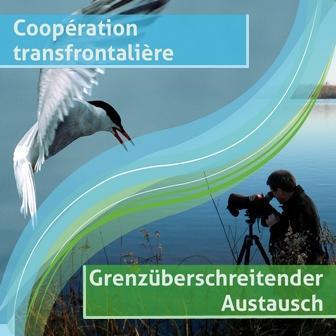 Coopération transfontalière